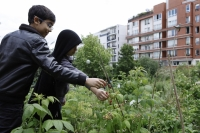 Petit jardinier citoyen