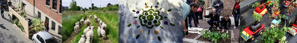 Nature en ville et biodiversité urbaine