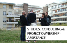 Studies, consulting, project ownership assistance
